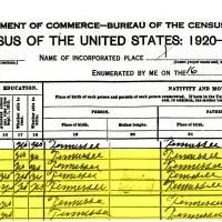 Sims_1920_Census.jpg