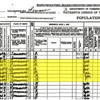 Sims_1940_Census.jpg
